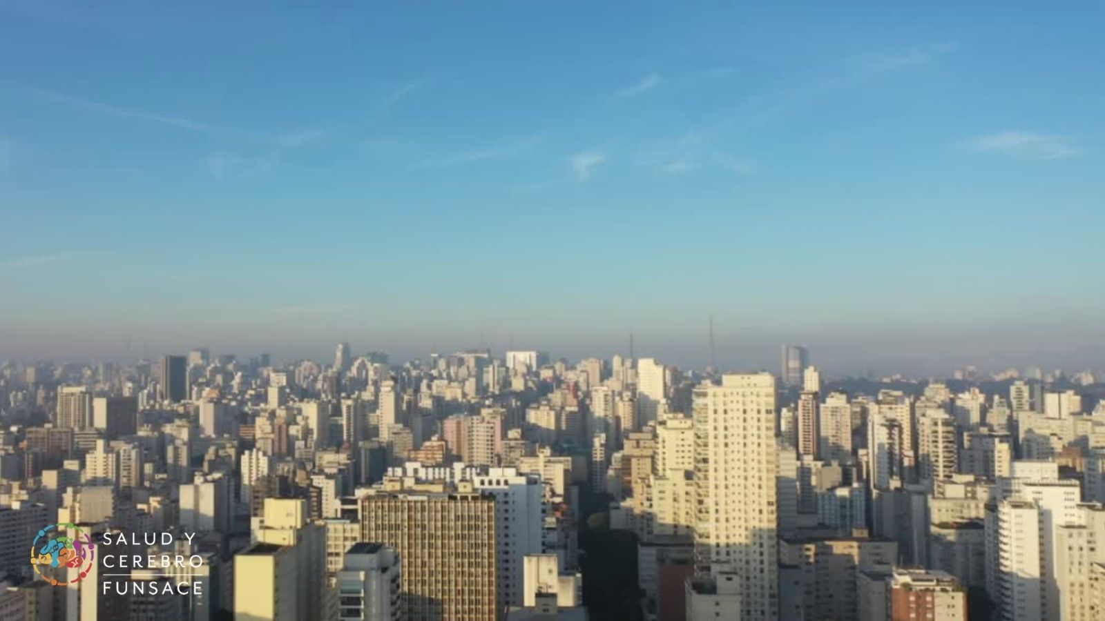 ¿Cómo puede afectar la contaminación del aire a nuestro cerebro?